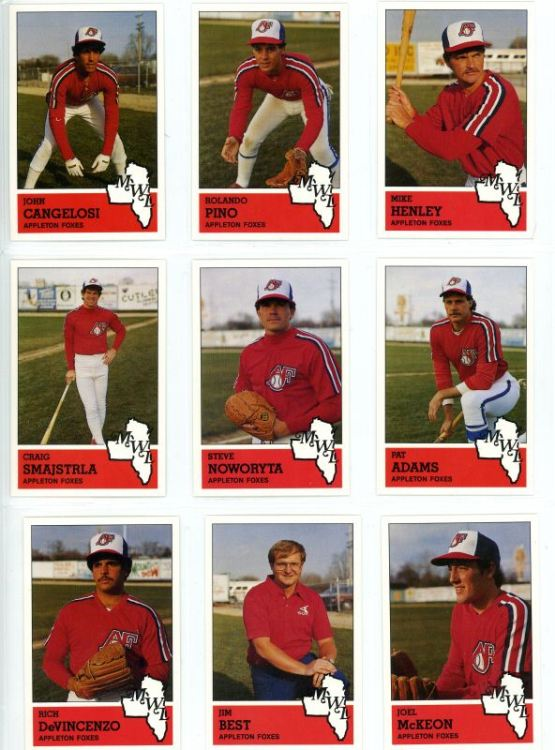 Nine members of the 1983 Appleton Foxes.
